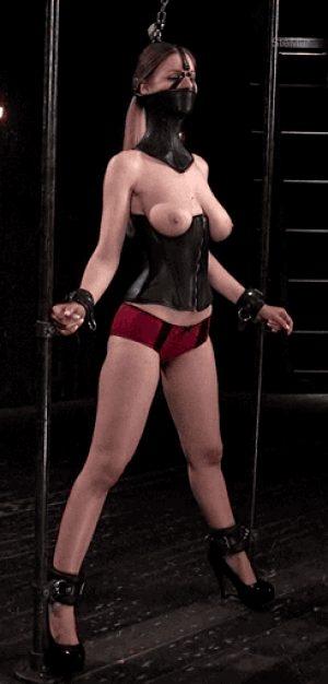 bondage posture collar, corset and restraints
