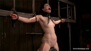 Brunette screams into her ballgag while getting destroyed with a sybian