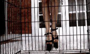 Caged slave's POV