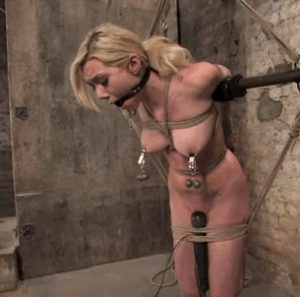 pain and bondage mainly torment the breasts
